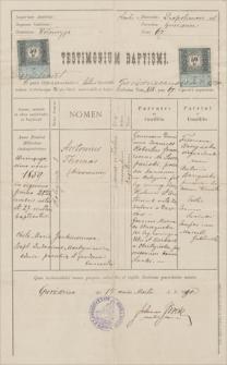 Papiery Antoniego Szczepańskiego